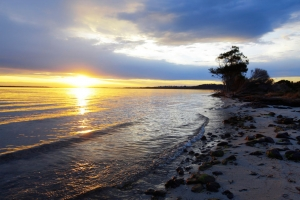 fraser_island_5933